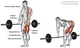 Stiff-legged deadlifts