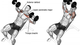 Inclined Dumbell Press